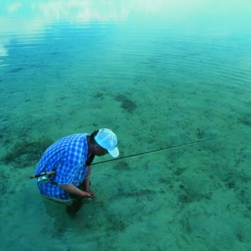 Watfischen auf Bonefish