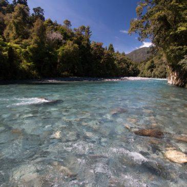 Neuseeland – Ein Forellentraum