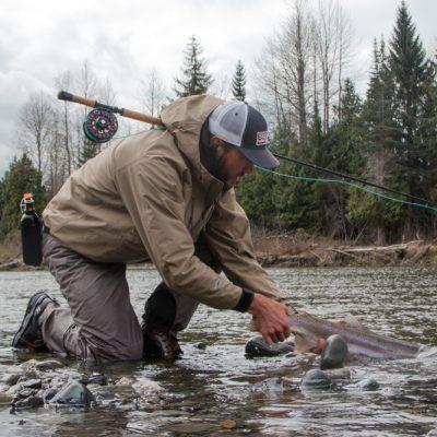 Catch & Release. Steelhead sind streng geschützt.